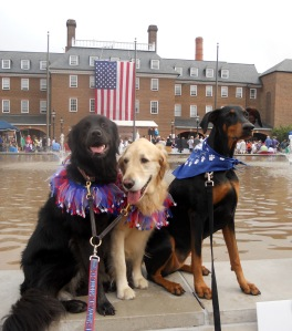 Dogs posing in front of the town hall fountain