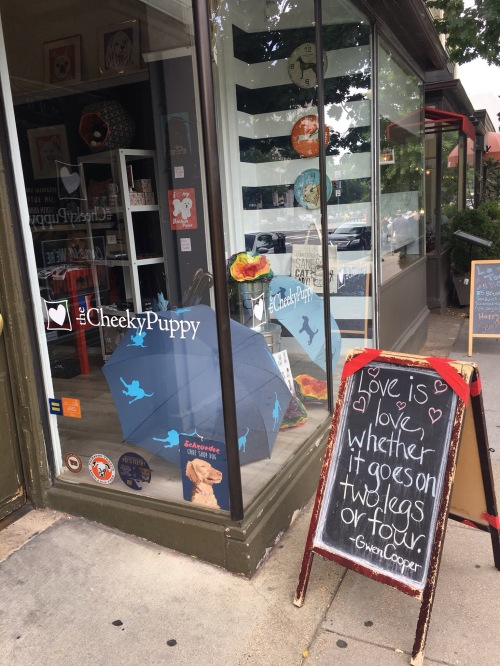storefront window display with dog toys and chalkboard sign